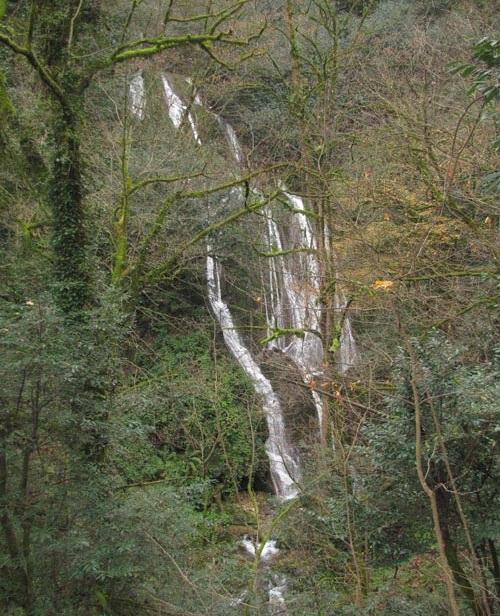 517 آبشار کلیره