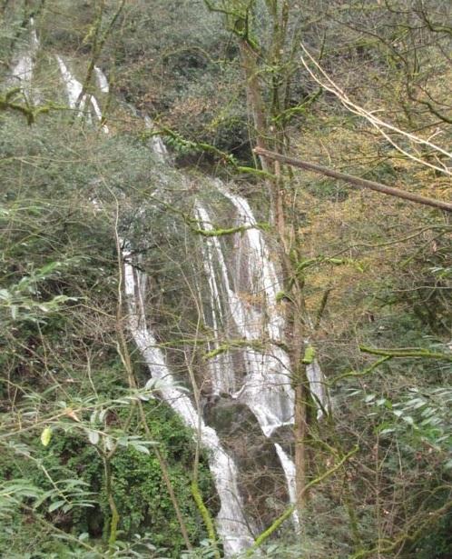 518 آبشار کلیره