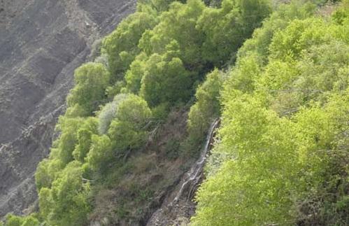 158 آبشار جنگلک
