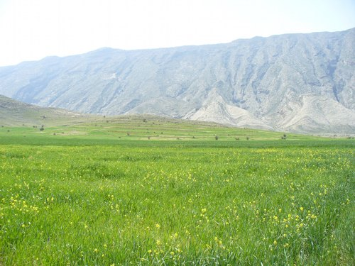روستاي گلستان(كاسكان)