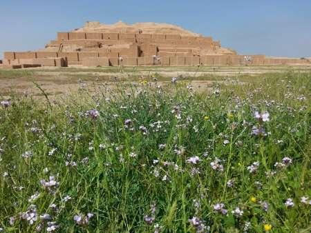 سفر 12 هزار گردشگر از 45 کشور جهان به شهر باستانی شوش