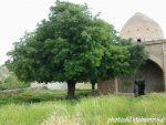 روستای گوشه شهنشاه