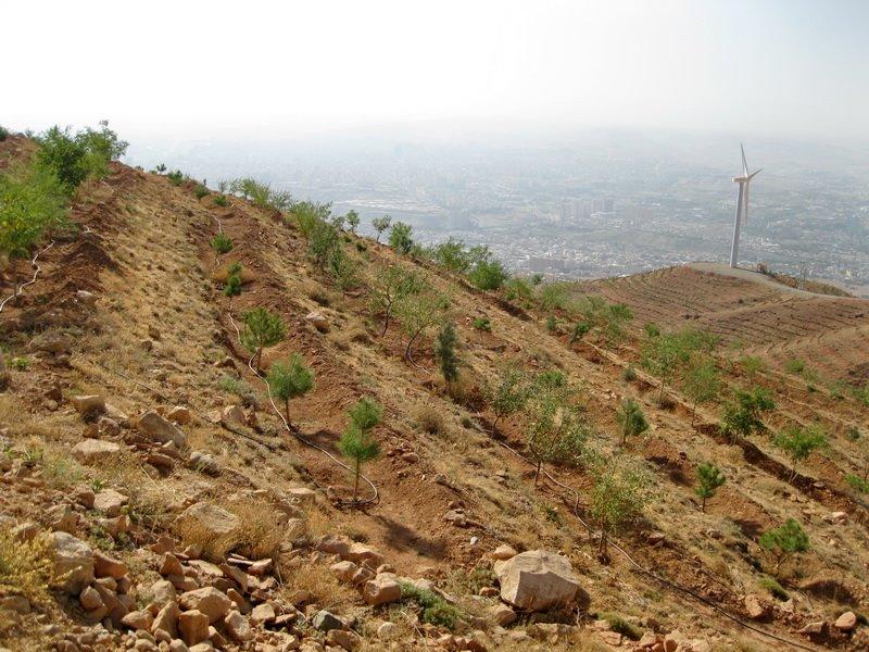 1052 پارک جنگلی عینالی تبریز