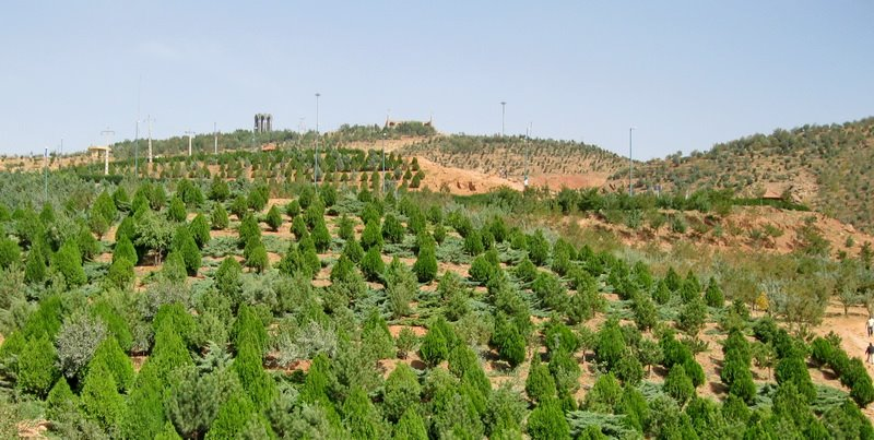 پارک جنگلی عینالی تبریز