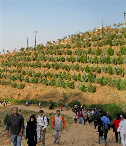 1057 پارک جنگلی عینالی تبریز