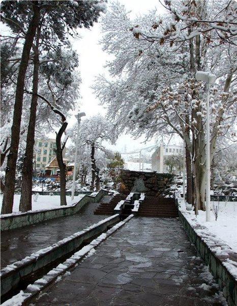 1178 پارک ایران زمین کرج