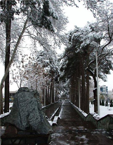 1179 پارک ایران زمین کرج