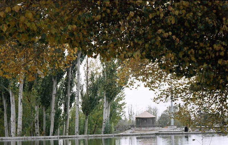 1262 پارک جنگلی مرخونی
