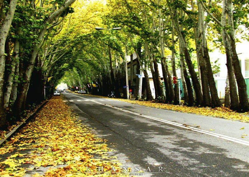 1380 پارک جنگلی سرچشمه خوانسار