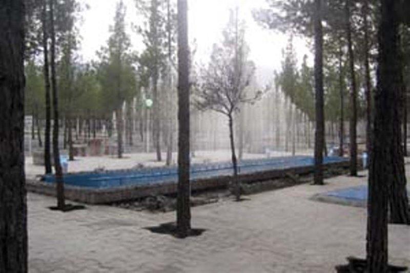 1446 پارک جنگلی بیرجند