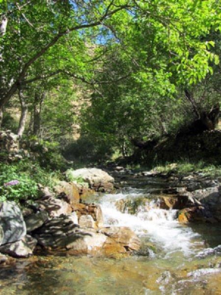 پارک جنگلی امامزاده سید حسین