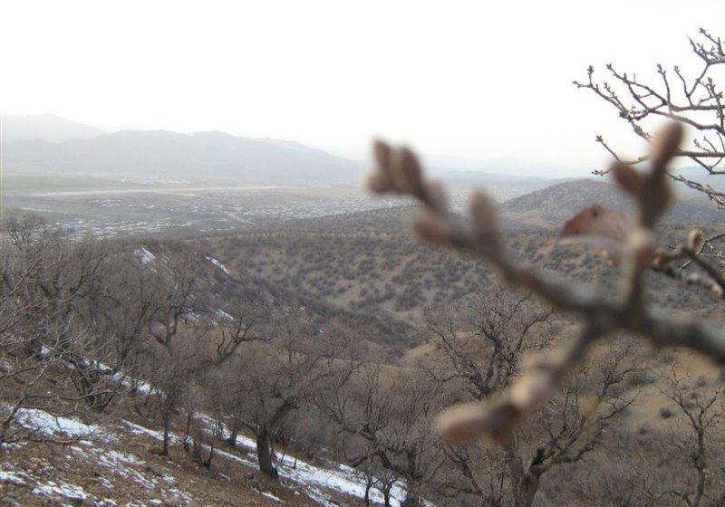 1693 پارک کوهستان یاسوج