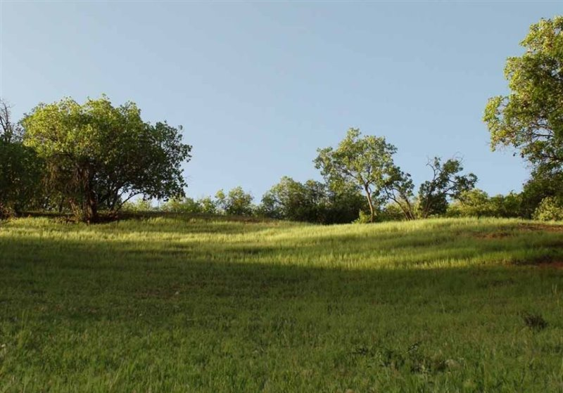 1698 پارک کوهستان یاسوج