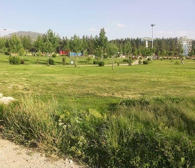 1702 پارک مهرورزی یاسوج