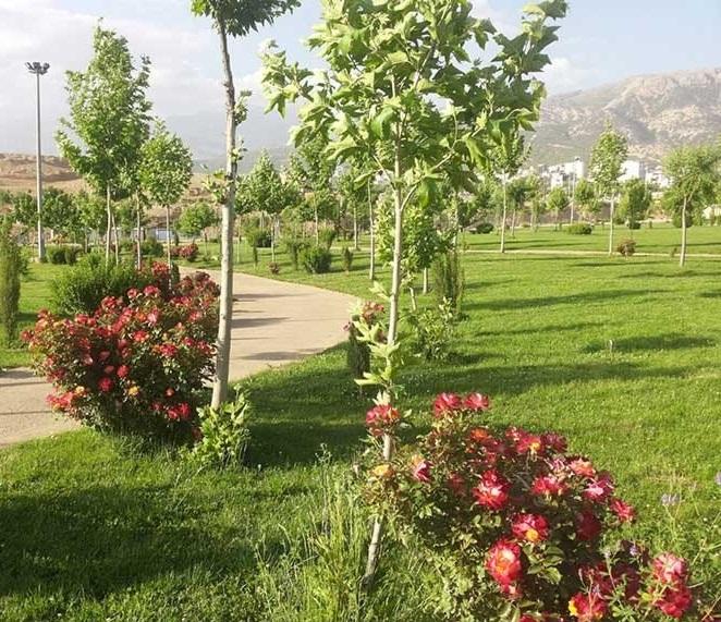 1710 پارک مهرورزی یاسوج