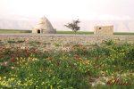 روستای هرم