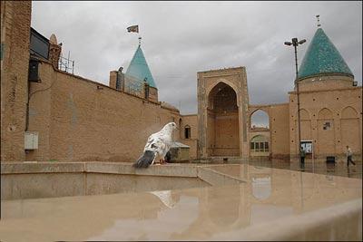 426 مسجد امامزاده محمد بسطام