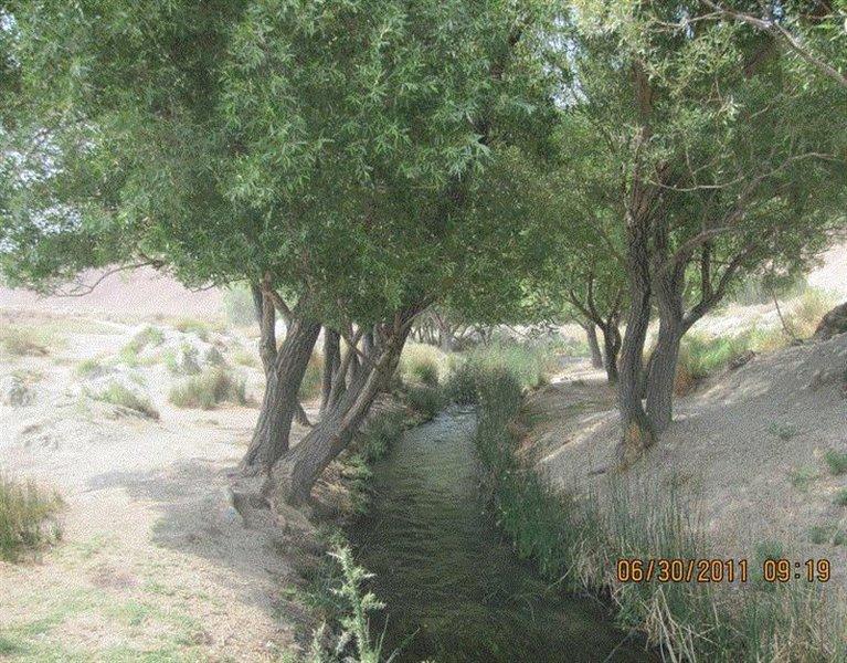 524 پارک سرچشمه نهر مسیح