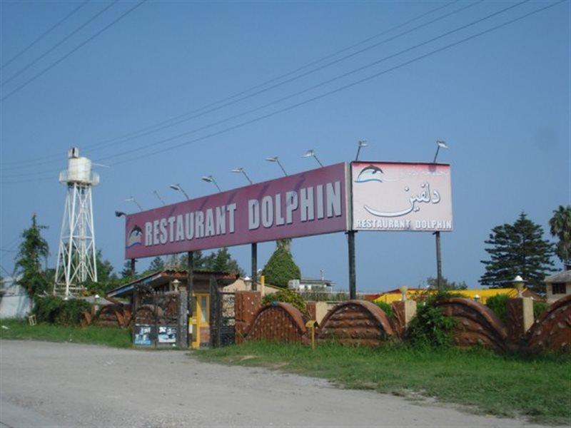 877 رستوران دلفین چالوس