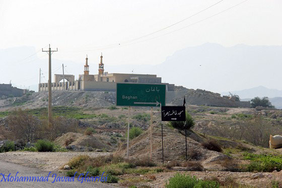 Image result for باغان