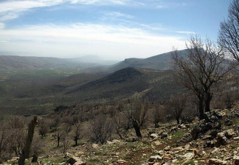 174 منطقه حفاظت شده مانشت و قلارنگ
