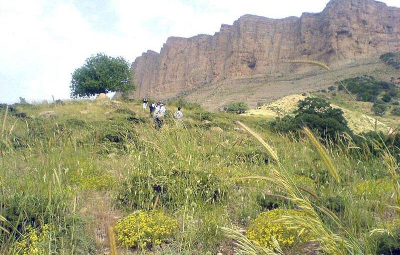 177 منطقه حفاظت شده مانشت و قلارنگ