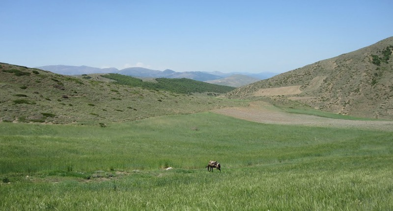 220 منطقه حفاظت شده هزار جریب