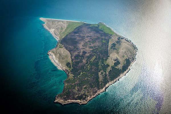 264 جزیره شیدور