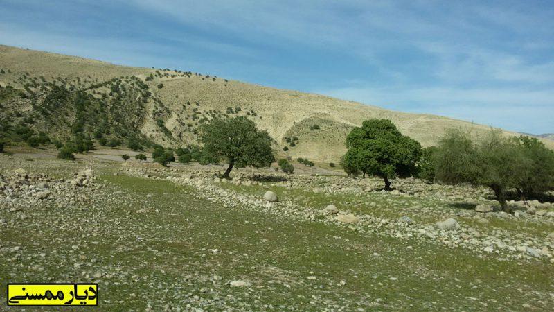 -رستم-1 روستای نوگک رستم