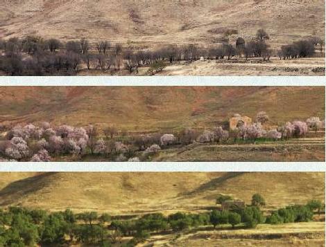 روستای نویس