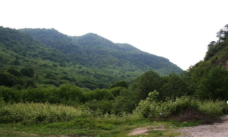 منطقه حفاظت شده آبشار شیرگاه