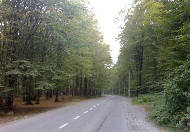471 پارک جنگلی باغو
