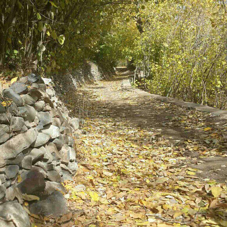 روستای ونان