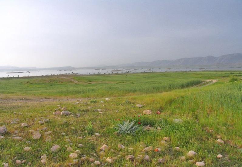منطقه حفاظت شده ارژن