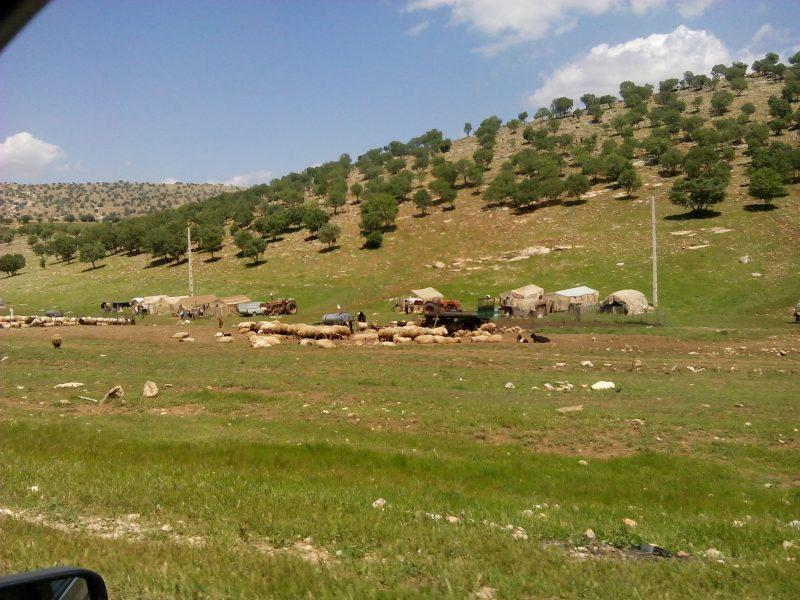 IMG-۲۰۱۶۰۵۱۱-۱۴۴۴۴۹ روستای مامال