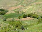 روستای عيسی آباد