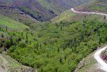 روستای دزآور