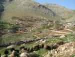 روستای مزیدی