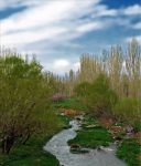 زنجانرود ( زنجان چای )