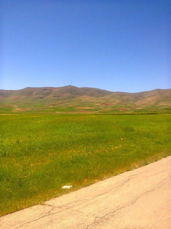 روستای هفت آشيان سنجابی