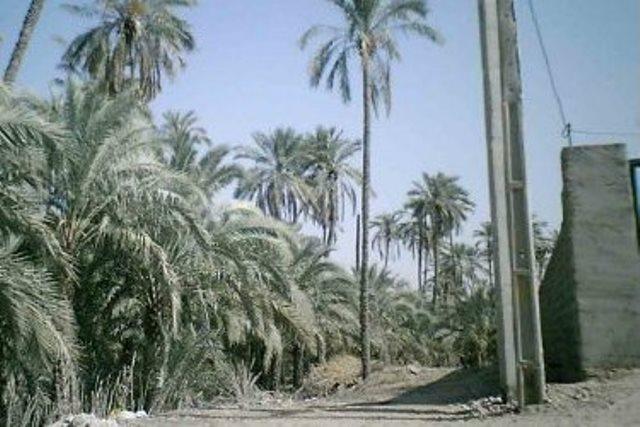 IMG03074816 روستای بشیرآباد