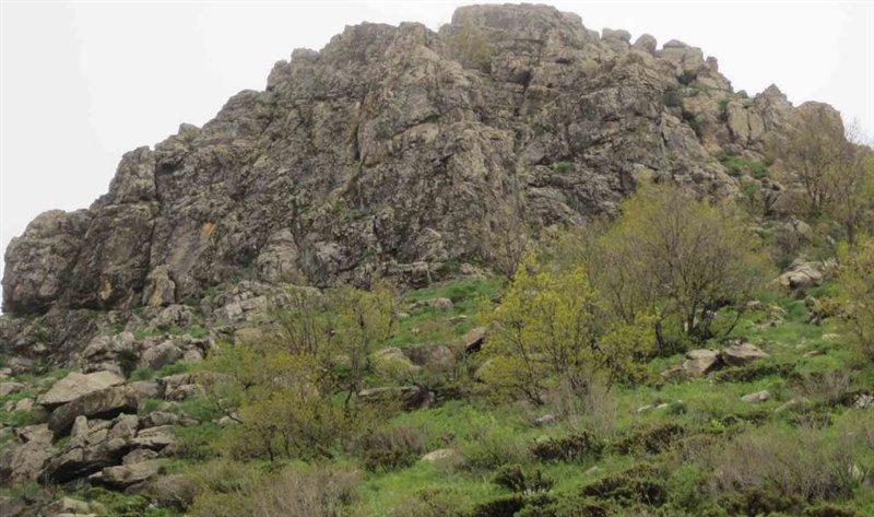 1238 کوه آربابا