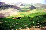 کوه کوچسار