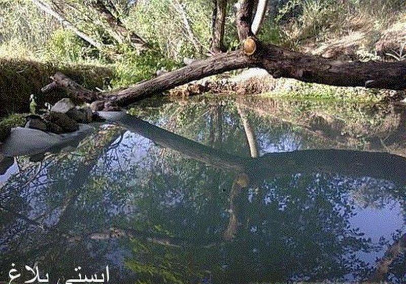 1289 چشمه آبگرم ایستی بلاغ