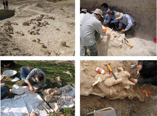 منطقه طبیعی تاریخی فسیلی مراغه