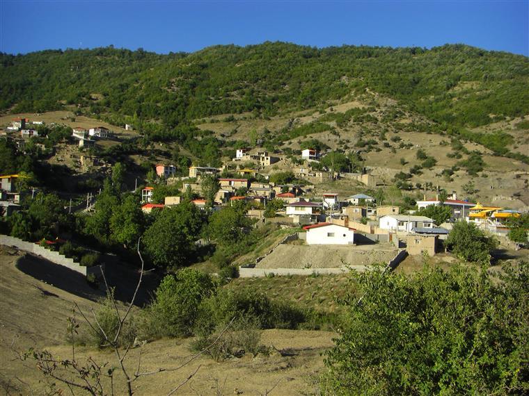 روستای رضی