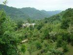 روستای کانرود آستارا