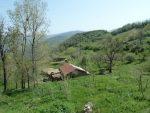روستای رجن