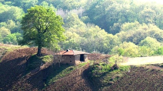 روستای مبارک آباد مینودشت