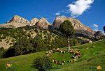 رشته کوه های هزار مسجد کجاست؟